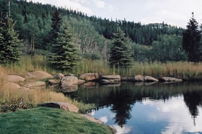 Silverthorne Colorado Upper Trout Pond
